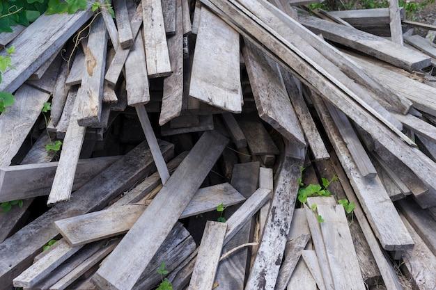 Immagine di patatine e altri detriti da un tronco d'albero rotto. piccole profondità di campo boschi di fuoco scheggiati.