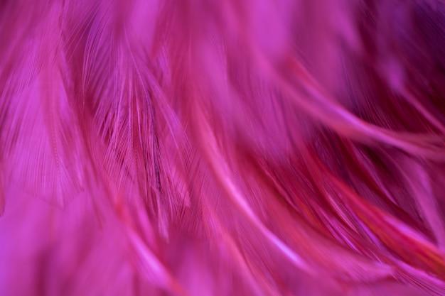 Immagine natura arte di ali di uccello, morbido pastello dettaglio di design, trama di piume di pollo