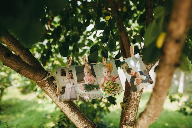 Immagini del bambino su un albero