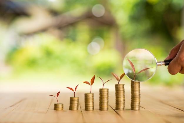 Impianto crescente in fila di denaro di moneta, csr in attività