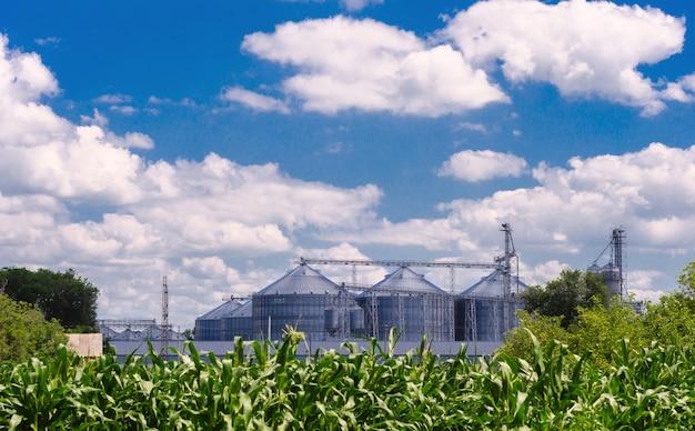 Imprese agricole. in faccia contenitori di ferro lucido per conservare il grano.