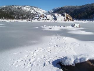 Impronte su un lago ghiacciato nevoso