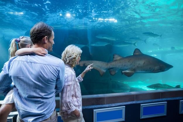 Indossare la vista della famiglia guardando lo squalo in una vasca