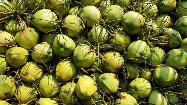 Industria delle materie prime di trasformazione dei prodotti alimentari della frutta delle noci di cocco