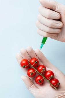 Iniezione di pomodorini con prodotti chimici