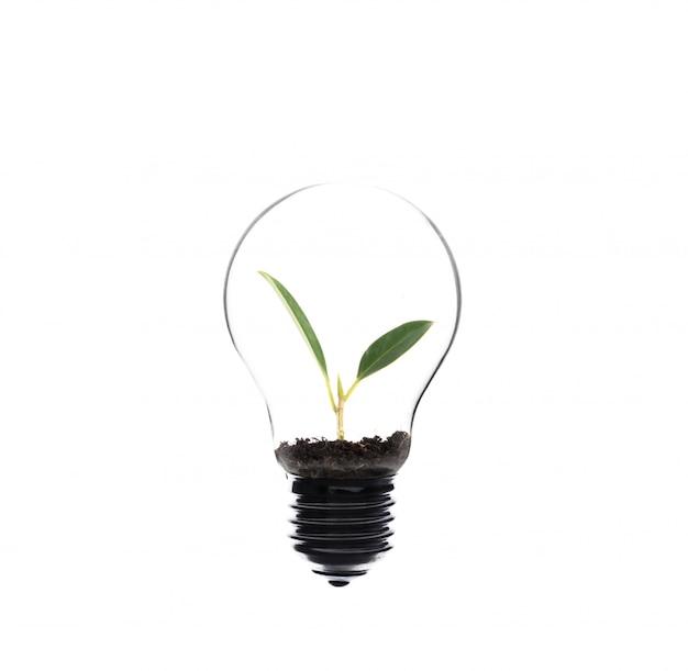 Innovazione bianco trasparente riscaldamento del colore