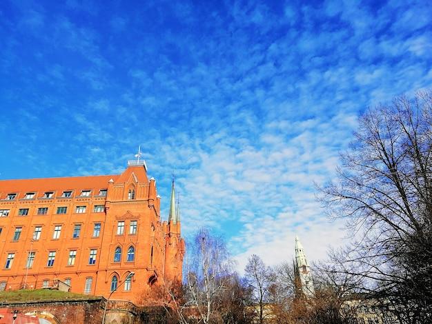Inquadratura dal basso di una cattedrale circondata da alberi spogli sotto un cielo nuvoloso a szczecin, polonia