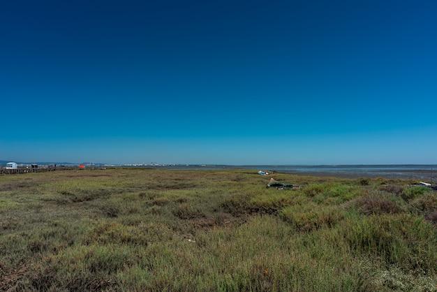 Inquadratura del campo erboso accanto a una spiaggia a cais palafítico da carrasqueira, portogallo