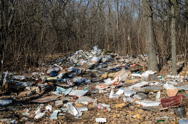Inquinamento, immondizia, natura