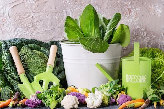 Insalate verdi, cavoli, verdure colorate
