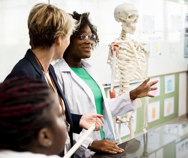 Insegnante di biologia che insegna anatomia con diversi studenti delle scuole superiori