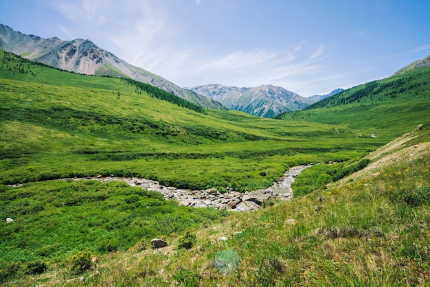 Insenatura della montagna in valle verde fra ricca vegetazione dell'altopiano nel giorno soleggiato.