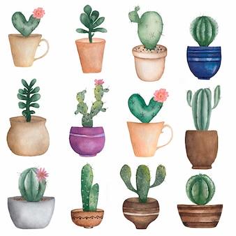 Insieme dei cactus disegnati a mano delle piante domestiche dell'acquerello nei vasi.