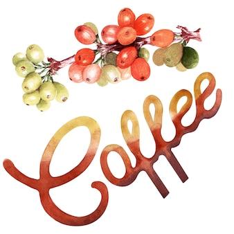 Insieme dell'acquerello con attributi di caffè. caffettiera, cappuccino, tazza, bacche e chicchi di caffè