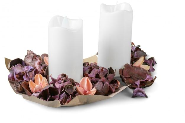 Insieme di piante autunnali e foglie secche, petali secchi e fiori, rami semplici rustici e mazzo di grano su bianco