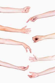 Insieme di vari gesti delle mani su sfondo bianco