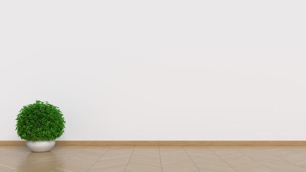 Interior design bianco con piante su un pavimento