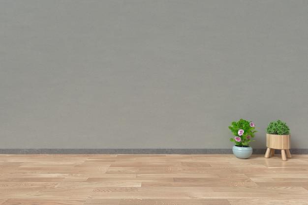 Interno con e piante ornamentali sul fondo della parete vuota