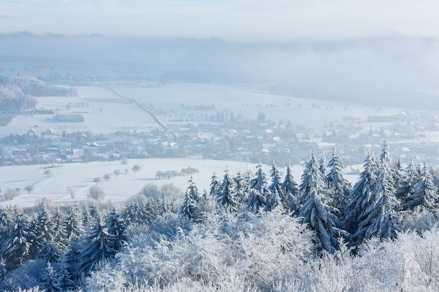 Inverno bellissimo paesaggio con alberi coperti di brina. un piccolo villaggio europeo si trova tra i campi innevati.