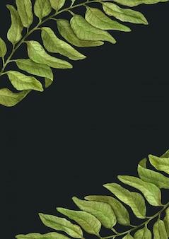 Invito vintage elegante ed elementi di botanica dell'acquerello. cartolina d'auguri con il ramo disegnato a mano dell'acquerello su un fondo bianco.