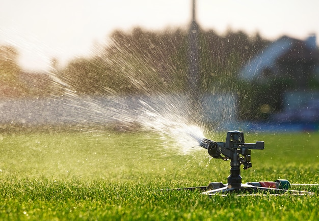 Irrigatore automatico che innaffia nel prato. sistema di irrigazione