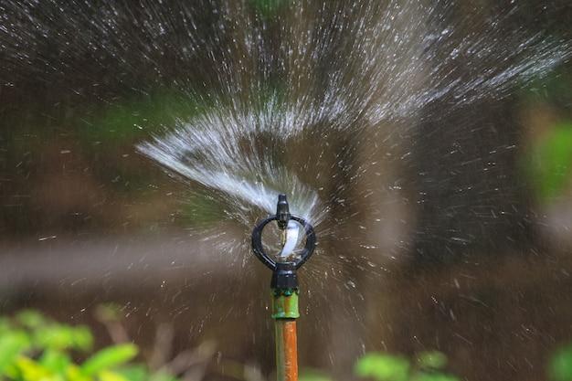 Irrigazione del campo agricolo