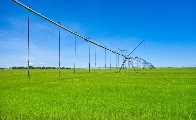 Irrigazione nel campo di cereali castiglia la mancha