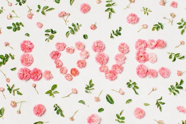 Iscrizione di amore da fiori rosa