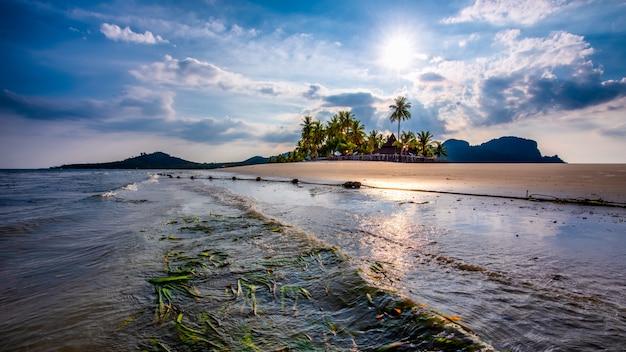 Isola di koh mook con spiaggia, alghe, palme e sole