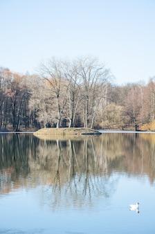Isola sul fiume svisloch di primavera a minsk