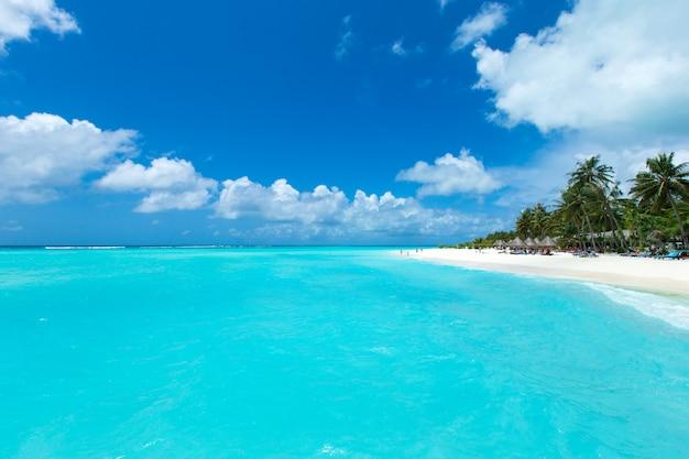 Isola tropicale delle maldive con la spiaggia sabbiosa e il mare bianchi