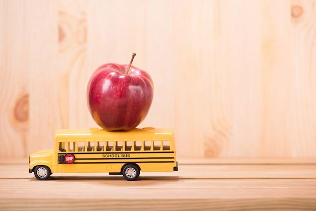 Istruzione, concetto di back to school con lo spazio della copia