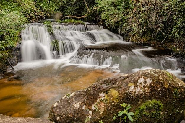 L'acqua cade nella foresta
