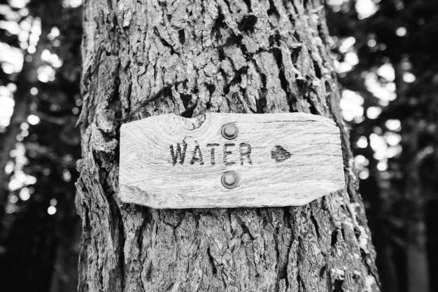 L'acqua per quella via