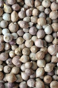 L'aglio è facile da coltivare e può essere coltivato tutto l'anno in climi miti.