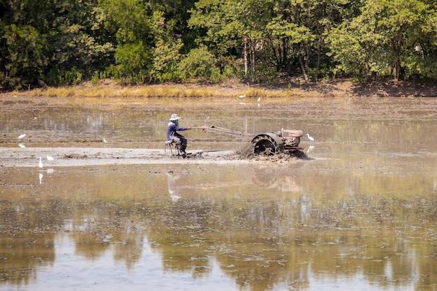 L'agricoltore sta guidando un aratro per coltivare il riso nelle sue risaie