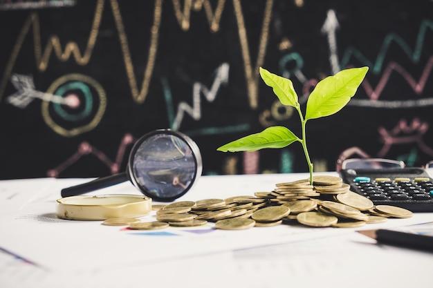 L'albero che cresce sulla pila di monete sul rapporto finanziario del grafico con la lente d'ingrandimento e calcolatore nel fondo, idea per il concetto di crescita di affari