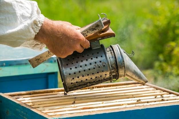 L'apicoltore fuma sotto l'alveare. cornice con api. fumatore di api fumigato apicoltore. apicoltura