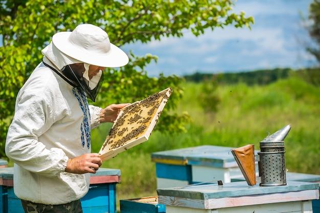 L'apicoltore sta lavorando con api e alveari sull'apiario. apicoltore sull'apiario.