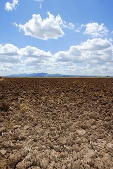 L'aratro ha arato l'orizzonte marrone del cielo blu del campo dell'argilla