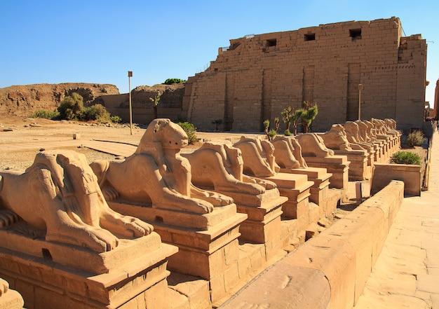 L'egitto, i faraoni, il complesso del tempio di karnak. luxor.