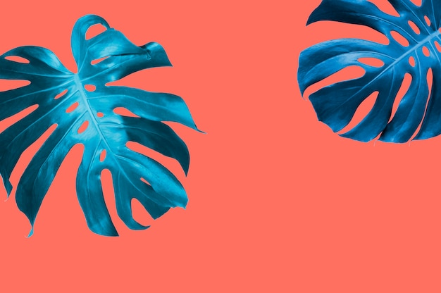 L'estate tropicale lascia la priorità bassa con colore di pantone dell'anno 2019 corallo vivente