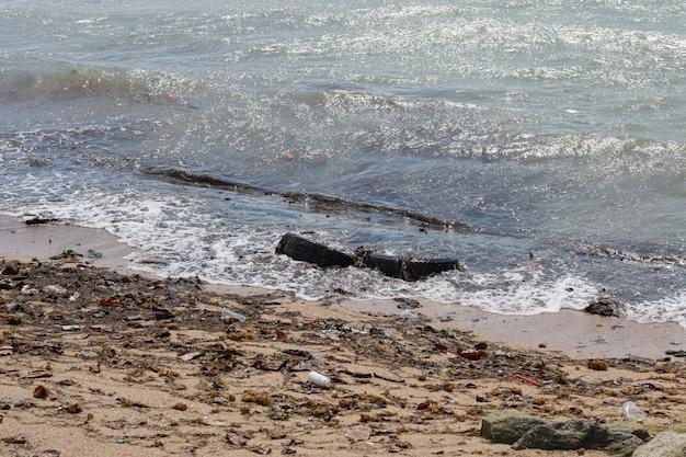 L'immagine della spiaggia sporca ha riempito di bottiglia di acqua di plastica vuota e di inquinamento di plastica, immondizia e spreco sulla spiaggia sabbiosa sporca e nessuno