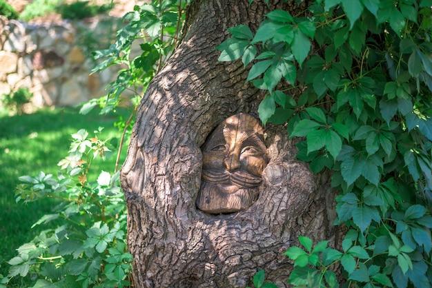 L'immagine di un eroe fiabesco nel tronco d'albero.