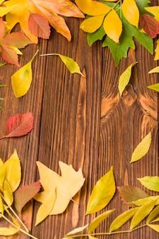 L'insegna di autunno con l'albero variopinto lascia su legno marrone