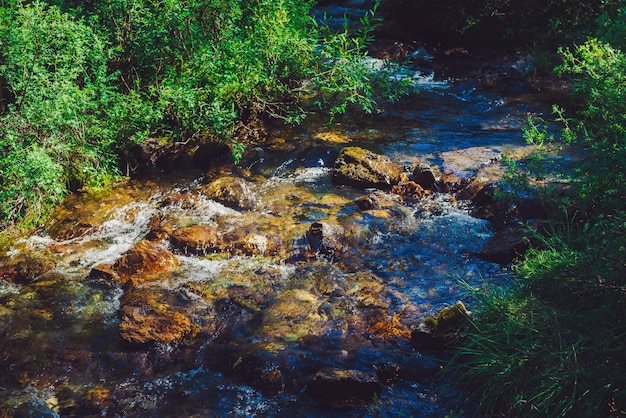 L'insenatura della montagna con le pietre si avvicina all'erba verde nel giorno soleggiato. flusso di acqua pulita nel ruscello veloce alla luce del sole. incredibile trama naturale.