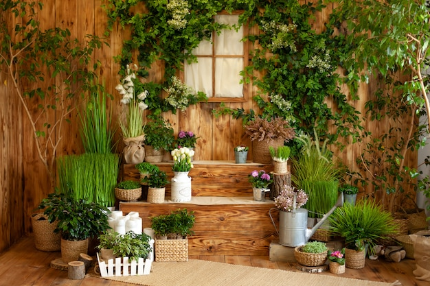 L'interno del cortile di primavera. patio di una casa in legno con piante verdi in vaso. giardinaggio sui gradini della casa. terrazza rustica. veranda in stile rustico nella decorazione primaverile. pasqua. coltivazione di piante in vaso.