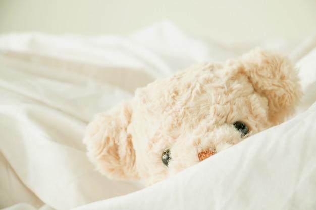 L'orsacchiotto sveglio gioca a nascondino con tessuto