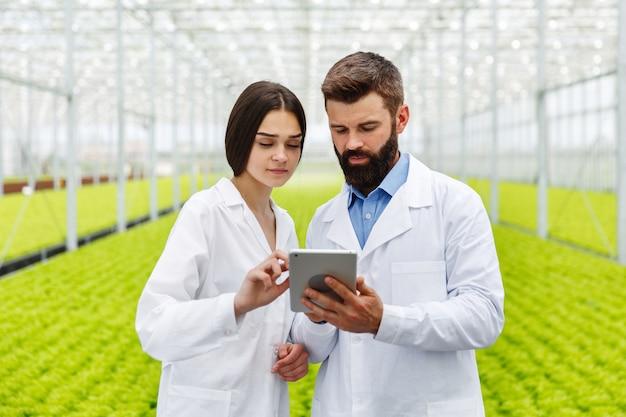 L'uomo e la donna lavorano con tablet in piedi nella serra