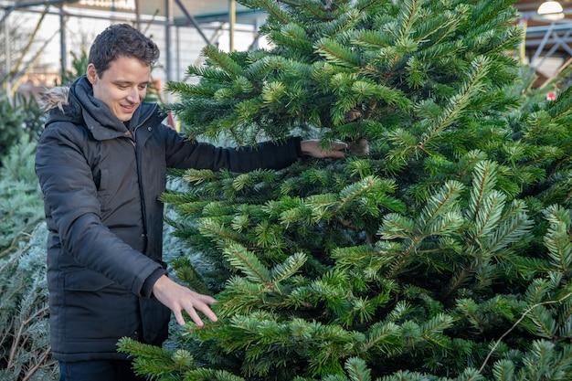 L'uomo seleziona un albero di natale sui mercati prima della vigilia di natale